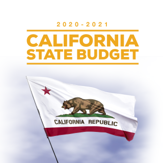 Ting Statement on the Passage of the 2020-21 State Budget